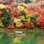 嵯峨野のトロッコ列車で紅葉を楽しむ!川下りやライトアップは?!