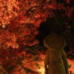 永観堂の紅葉はライトアップがおすすめ?!混雑やアクセス方法は?
